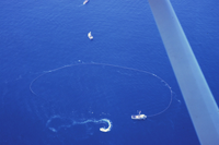 A tuna seiner circling a school of tuna