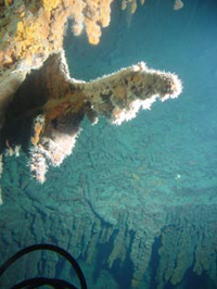 Rusticle hanging from the stern