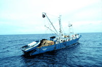 The Spanish tuna purse seiner F/V TXORI-EDER