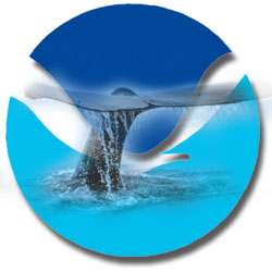 NOAA logo with whale tail