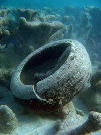 Tire on dead reef